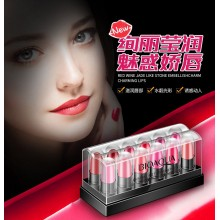 G9 Bioaqua 12 Colors Lipstick Set Travel Kit Waterproof Moisturizing Matte Lips Gloss Long Lasting