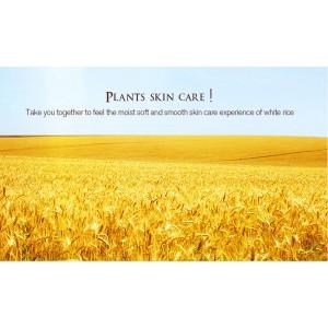 G9 Rorec White Rice Eye Cream Anti Wrinkle Remove Dark Circles (B52)